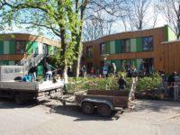 Kita Baumhaus Umgestaltung Garten